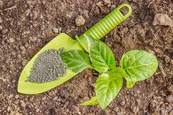 Виды и названия фосфорных удобрений, их значение и способы применения