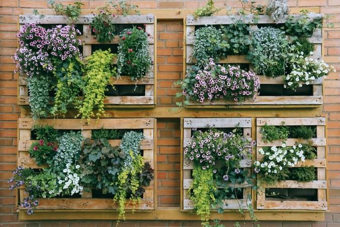 Что такое вертикальные клумбы, как их устроить (80 фото). Подбор цветов и примеры дизайна