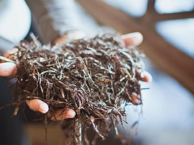 Подготовка субстрата (компоста): приготовление своими руками