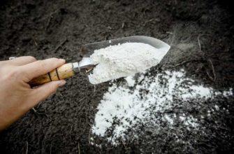 известь пушонка в огороде