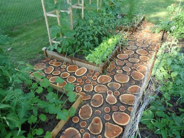 12 лучших материалов для дорожек между грядками на огороде. Примеры с фото