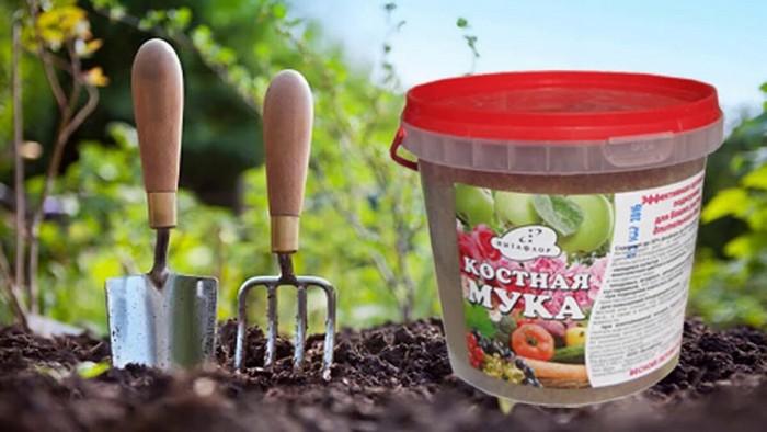 Костная мука как удобрение для растений: лучшая органическая подкормка